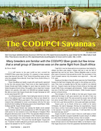 The CODI/PCI Savannas